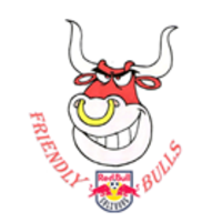Friendly Bulls